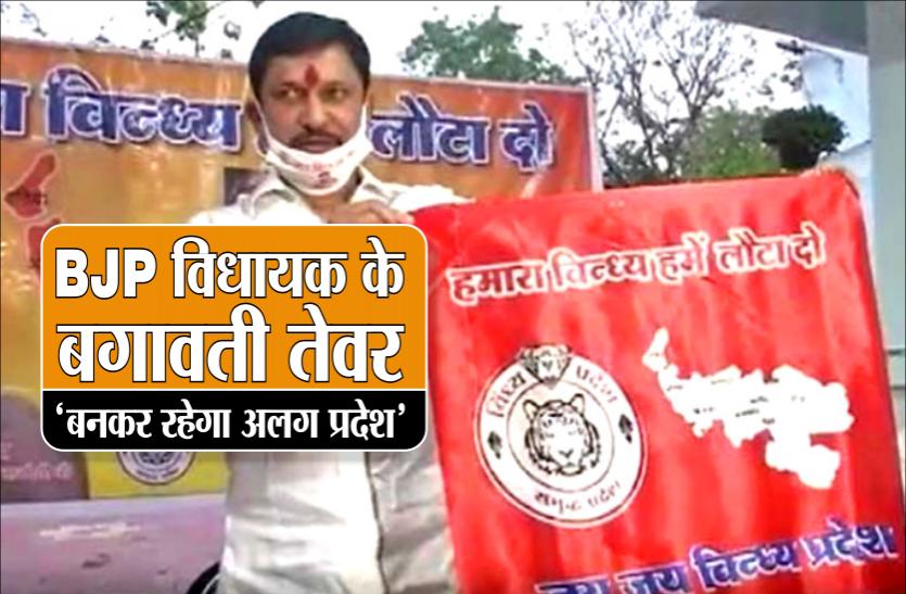 विंध्य प्रदेश का झंडा और लोगो लॉन्च कर बीजेपी विधायक ने फिर दिखाए बगावती तेवर