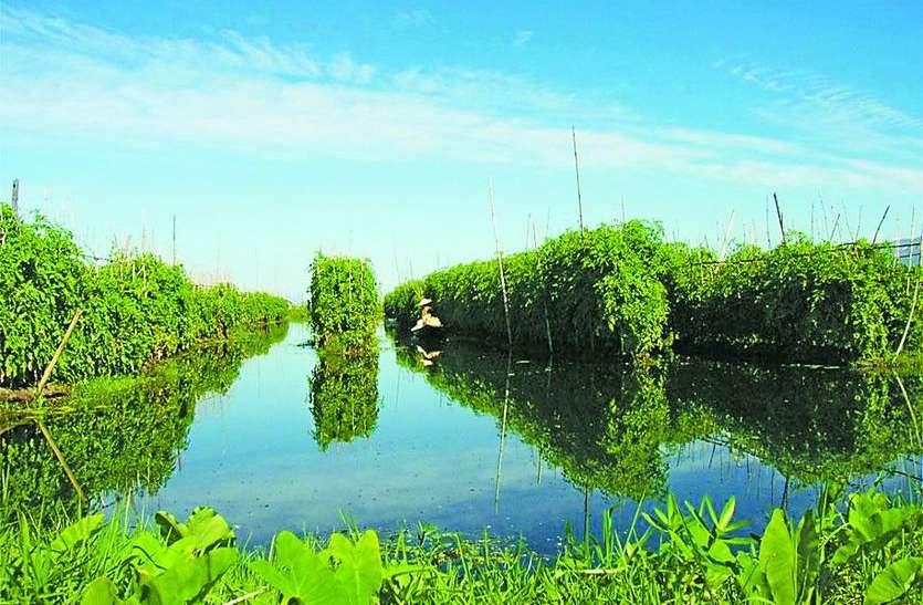 अन्नदाताओं के लिए वरदान हो सकता है बांग्लादेश का कृषि मॉडल