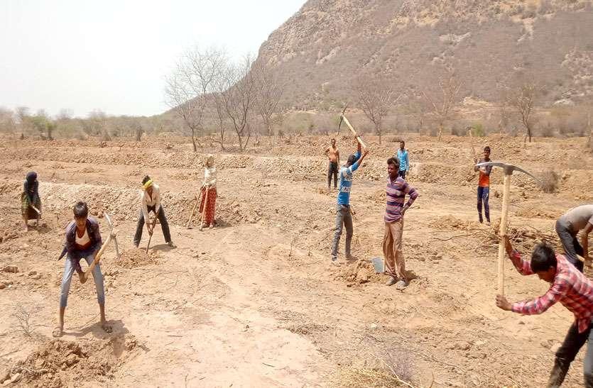 बीसलपुर के दर्रा में पौधरोपण के लिए दस हजार गड्ढे तैयार