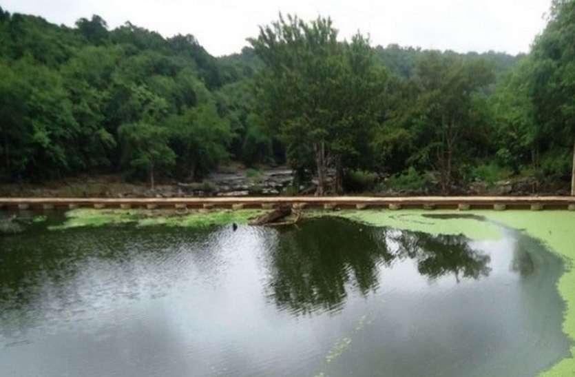 जीवनदायिनी काली नदी भी प्रदूषण की शिकार