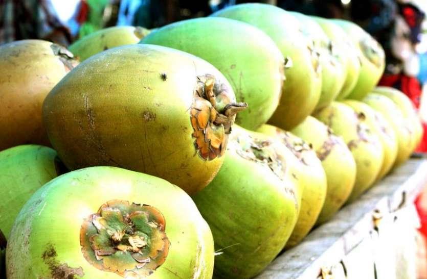 कोरोना काल में आसमान में पहुंचे नारियल पानी के दाम, खरीदकर घर में स्टॉक कर रहे हैं लोग
