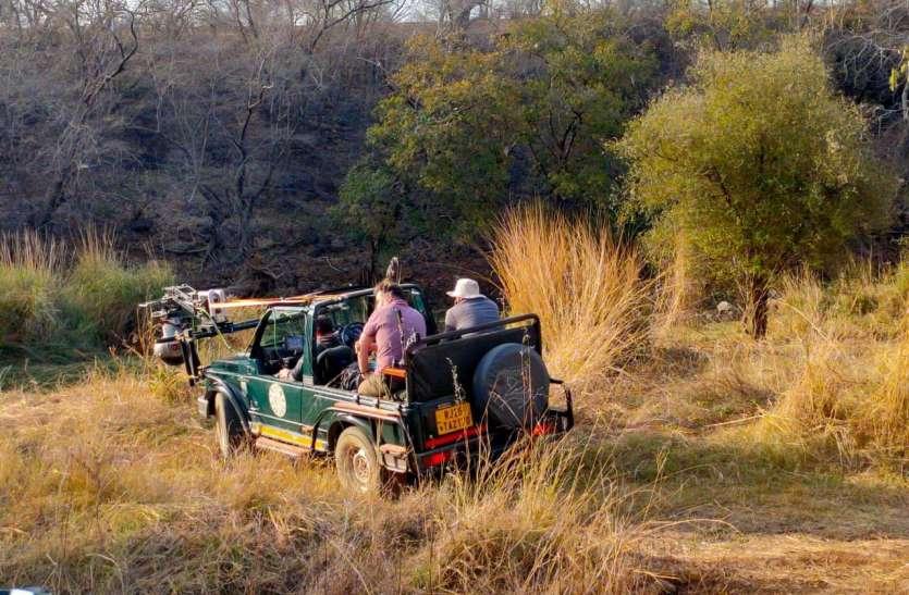 रणथम्भौर टाइगर रिजर्व में दो दिन बंद रहेगा पर्यटकों का भ्रमण