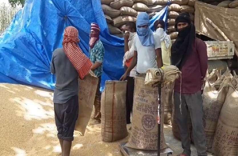 6 एजेंसियों के 162 क्रय केन्द्रों पर हो रही गेहूं खरीद, ऑनलाइन टोकन सिस्टम से किसानों को सहूलियत