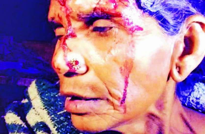 सोती वृद्धा का सिर पैंथर ने जबड़े से दबाया