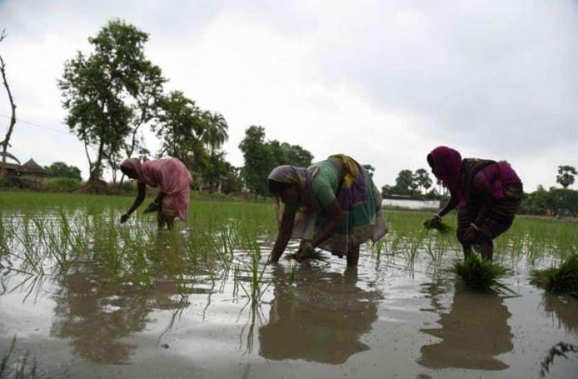 रिपोर्ट: भारत के आठ राज्यों में अधिक है जलवायु परिवर्तन का खतरा, बिहार, झारखंड और असम ज्यादा संवेदनशील