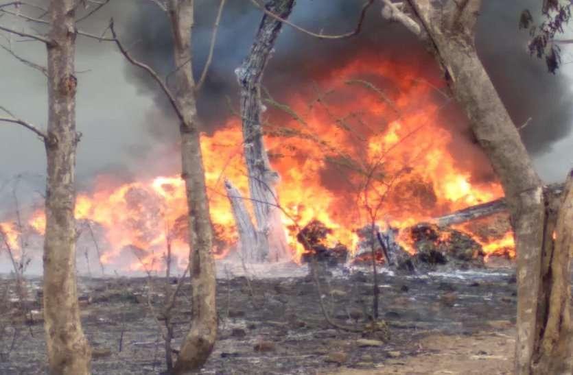 जिस दौर में ऑक्सीजन की सबसे ज्यादा जरूरत वहीं एक लापरवाही से जलकर खाक हो गए सैकड़ों हरे पेड़, ट्रेंचिंग ग्राउंड में भीषण आग