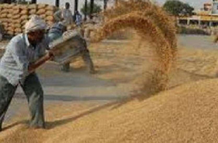 यूपी में 18 दिन में सिर्फ साढ़े तीन लाख मीट्रिक टन गेहूं की खरीद