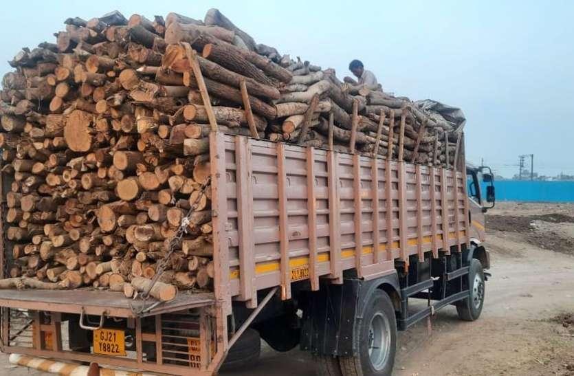 SURAT NEWS: मोक्षधाम में दे रहे हैं लकड़ी का योगदान