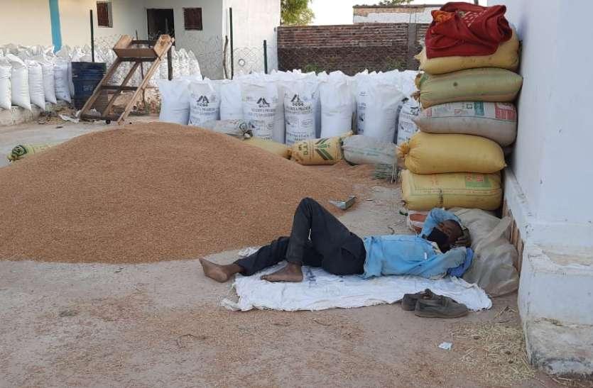 49 हजार किसानों को भेजे मैसेज, 18 हजार ने बेची उपज