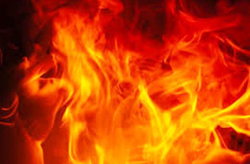 बंद ऑयल मिल में लगी आग, एक दर्जन बंदरों की झुलसने से मौत