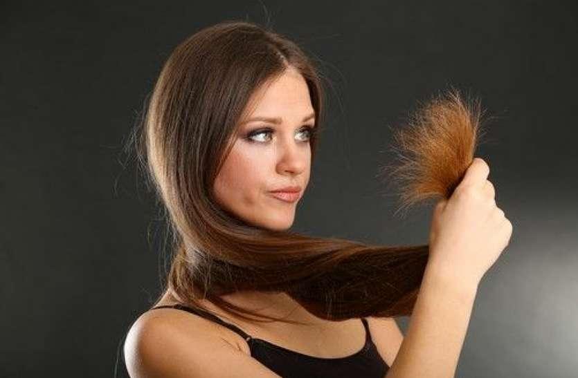 दो मुंहे बालों को ठीक करने के लिए घर में करें यह उपाय