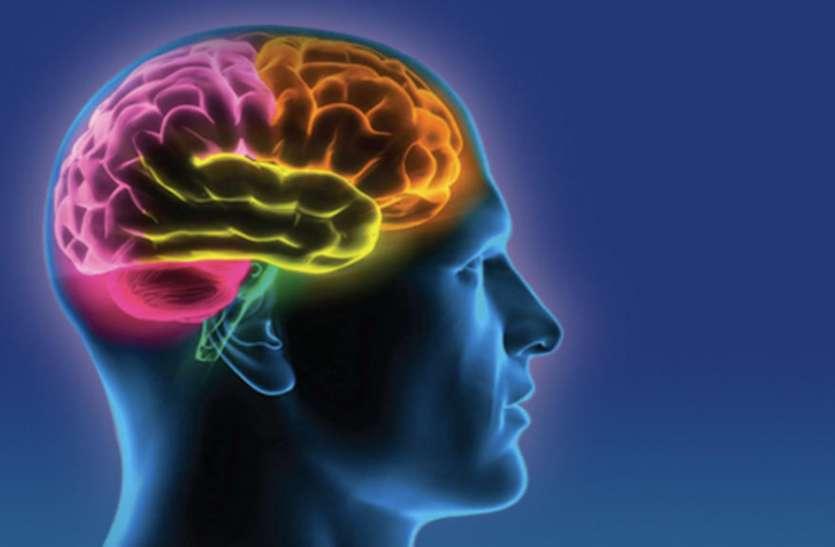 शोध में खुलासा- मस्तिष्क कैसे लचीले ढंग से देता है जटिल जानकारी