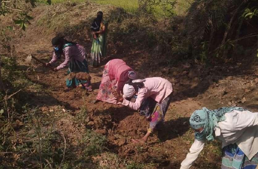 कोरोना काल में गांव में ही ग्रामीणों को मिल रहा है रोजगार