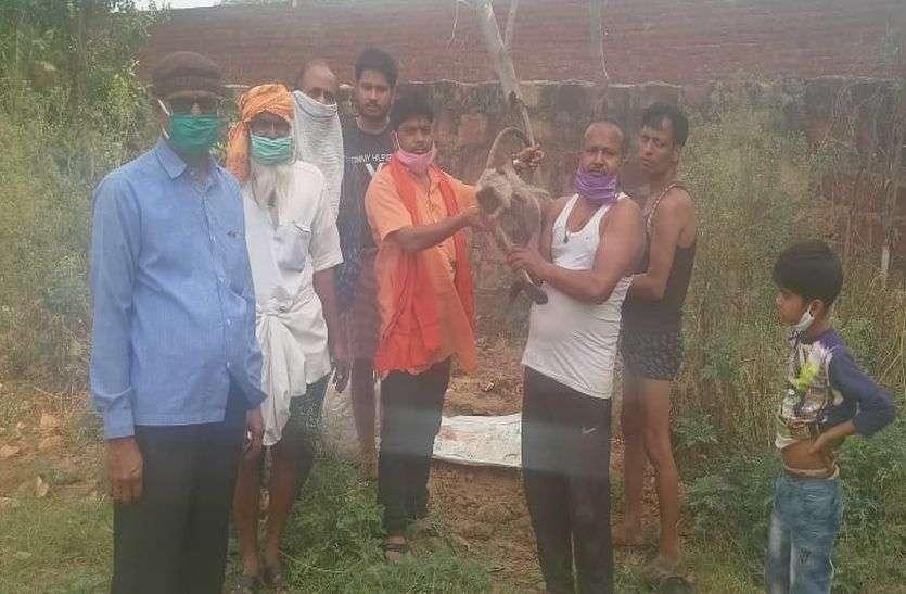 लंगूर का हुआ निधन तो विहिप कार्यकर्ताओं ने किया अंतिम संस्कार