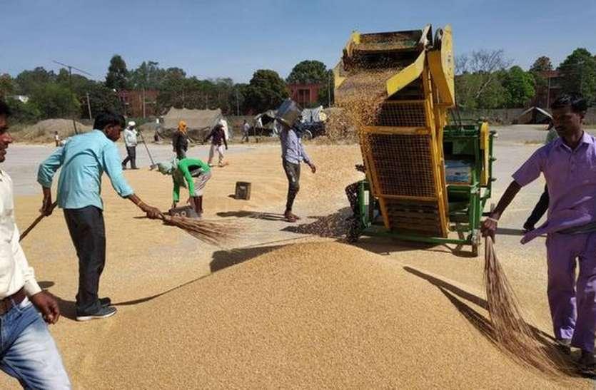 हरियाणा में पूर्ण लॉकडाउन के कारण सात दिनों तक मंडियों में गेहूं की खरीद पर लगी रोक