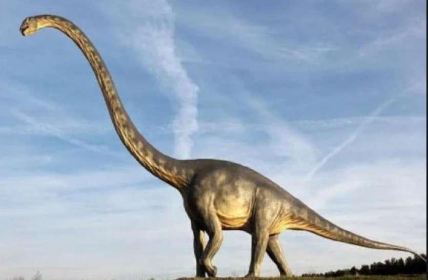 मेघालय में मिलीं सॉरोपॉड डायनासोर की 10 करोड़ साल पुरानी हड्डियां, जानिए कैसे दिखते थे