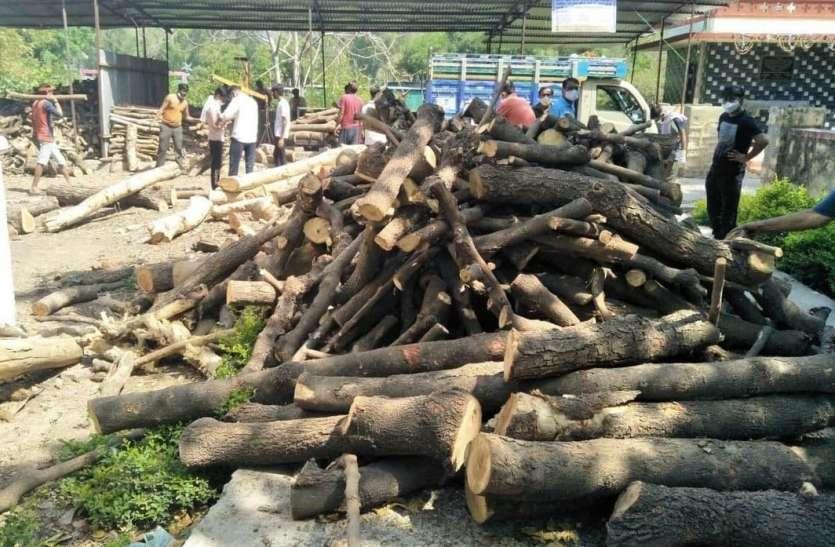 अंतिम संस्कार में लकड़ी की चार गुना बढ़ी खपत