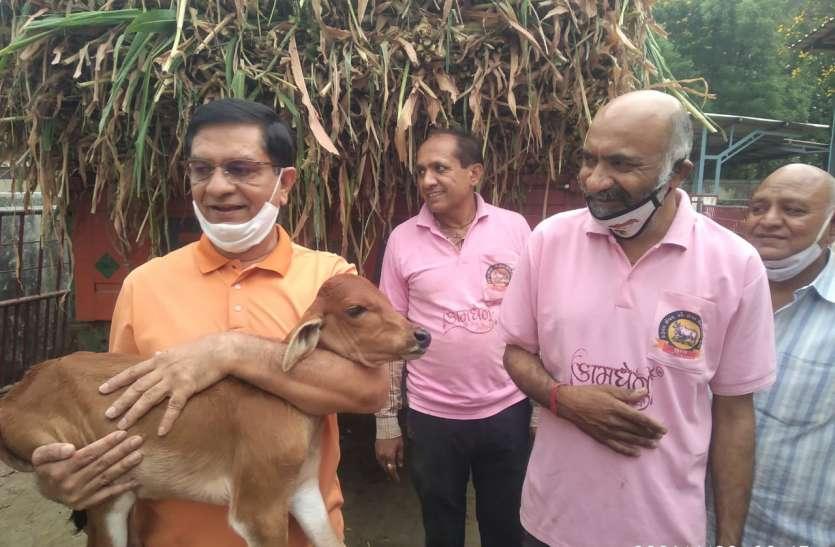 PATRIKA NEWS BRIEF : गजेरा ट्रस्ट लोगों के साथ गौ माता का भी कर रहा है देखभाल