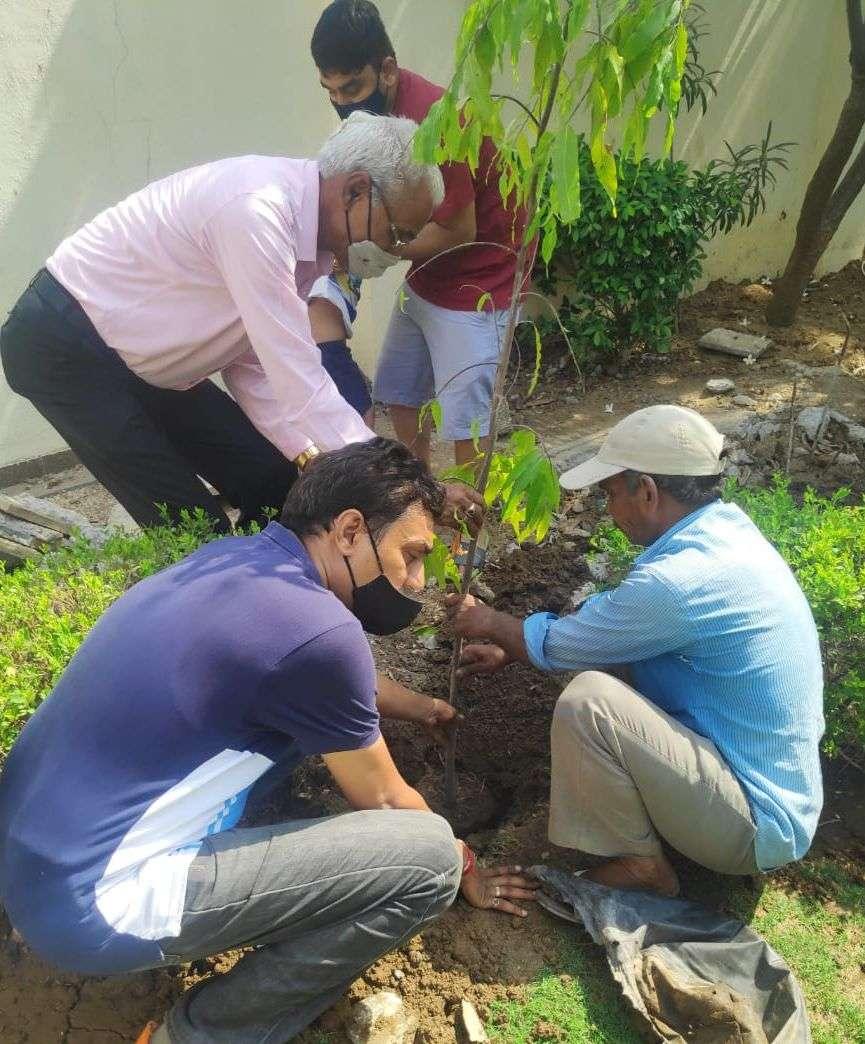 SURAT NEWS: महाराणा प्रताप की मनाई जयंती, लोगों को बांटे पौधे