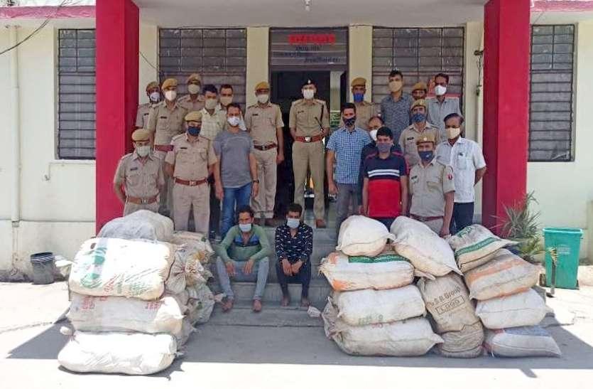 नारियल की आड़ में ला रहे थे 790 किलो गांजा, दो गिरफ्तार