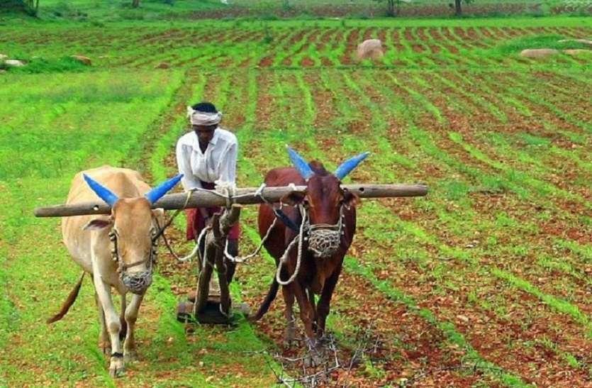 मोदी सरकार ने दी किसानों को बड़ी राहत, 140 प्रतिशत बढ़ा दी खाद में सब्सिडी