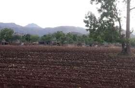 सरकार ने तोड़ी किसानों की कमर, 1200 रुपए की डीएपी अब मिलेगी 1900 रुपए में