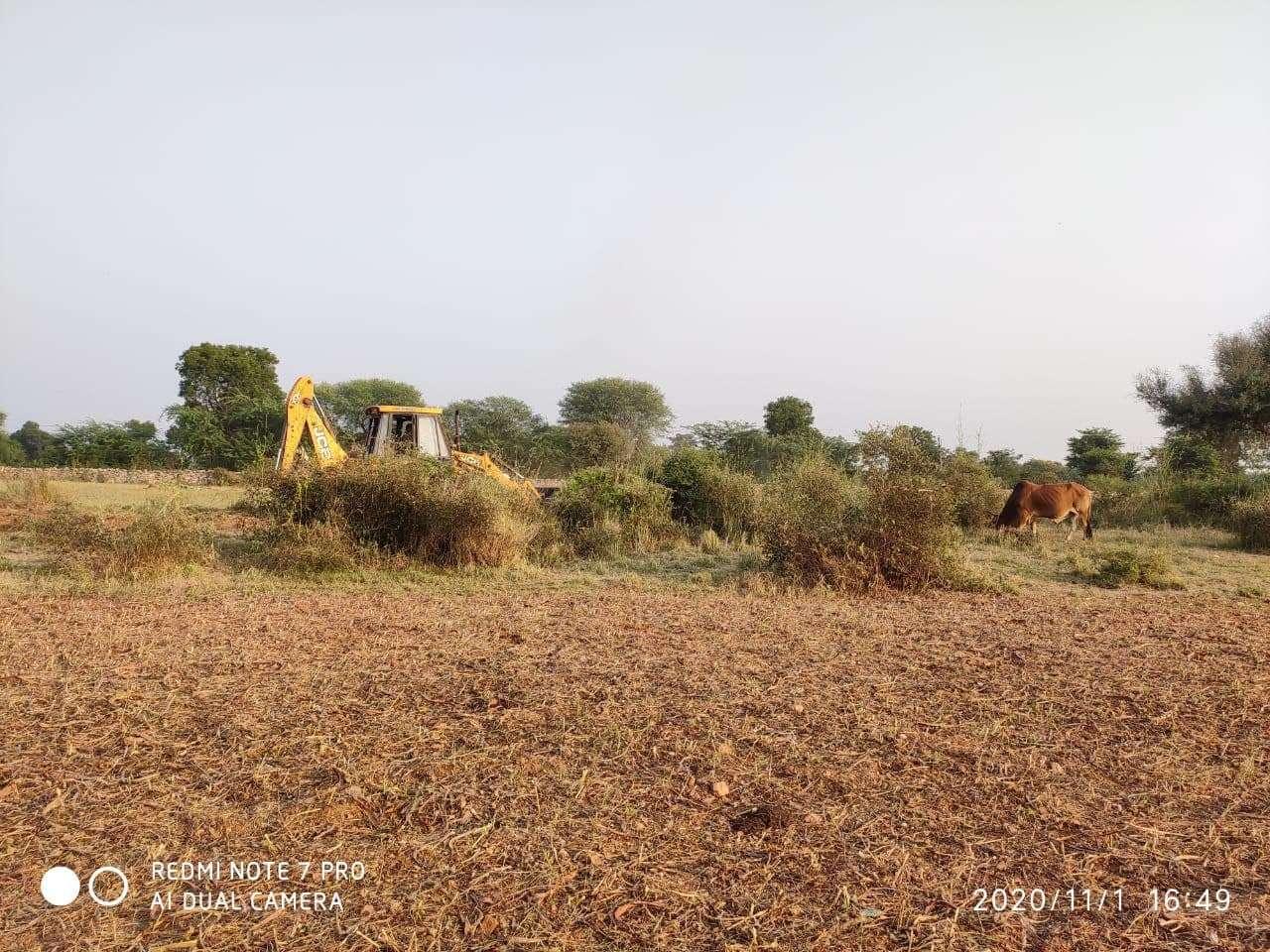 organic_farming.jpg