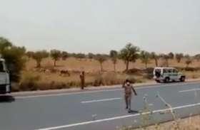 आरटीओ एसआई ने पकड़े ट्रक ड्राइवर के पैर, फिर भी नहीं बचा, देखिए वीडियो
