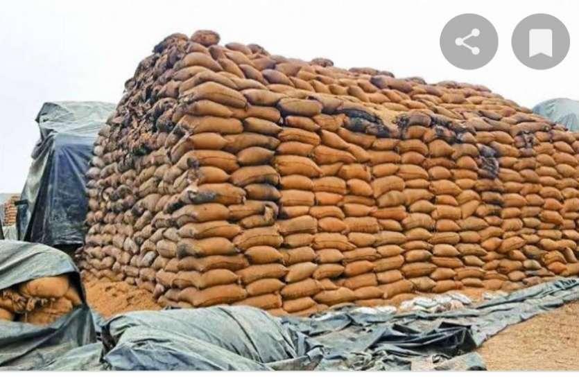 कस्टम मिलिंग के धान उठाव में लापरवाही, 28 राइस मिलर्स को कलेक्टर का नोटिस