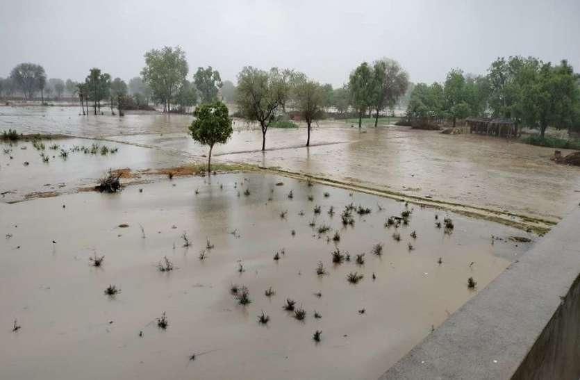 तूफान तौकते का असर: राजस्थान में भारी बारिश, सैकड़ों पेड़ गिरे, नागौर में बालक की मौत