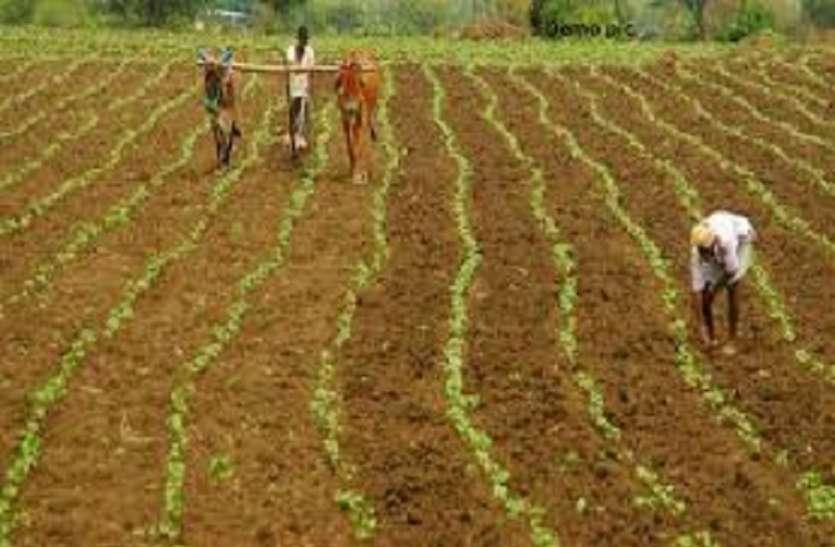 टैफे ने की तमिलनाडु में छोटे किसानों के लिए मुफ्त ट्रैक्टर किराए की योजना की घोषणा