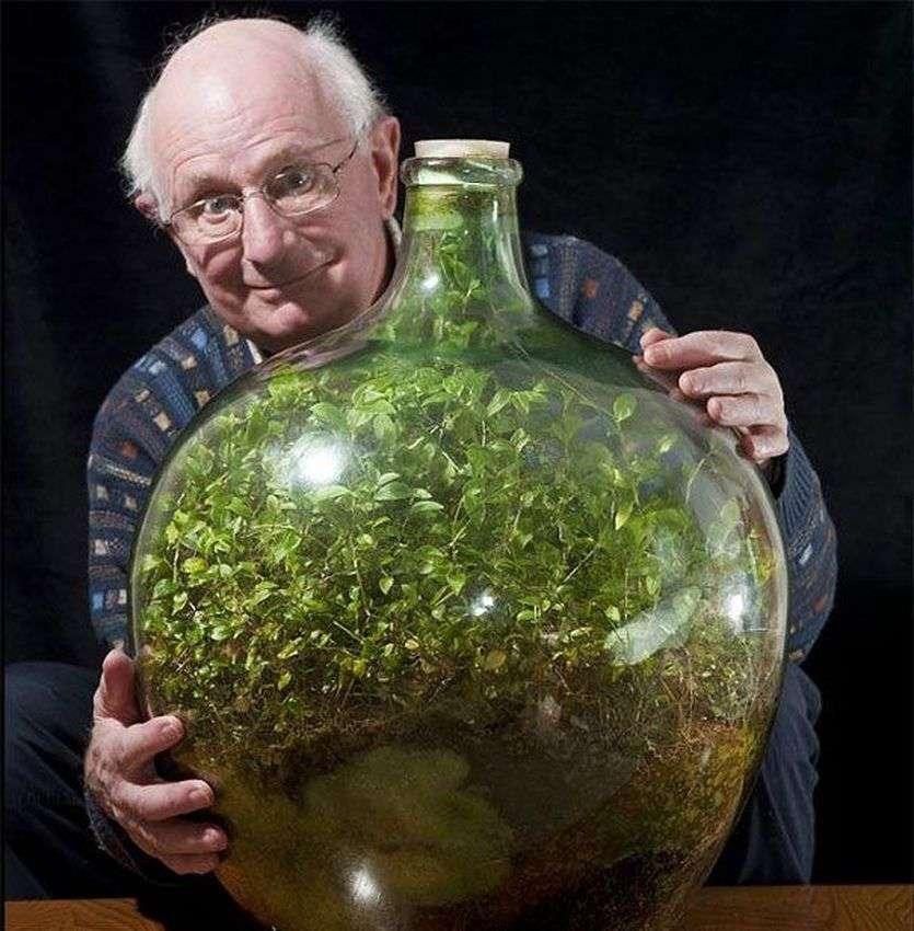 61 साल पुराना 'बोतल गार्डन', 40 साल से नहीं डाला पानी