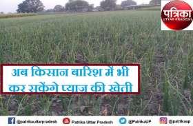 बुंदेलखंड में खेती में सब्जी की हरित क्रांति, अब बारिश के मौसम में भी लहलहाएगी प्याज