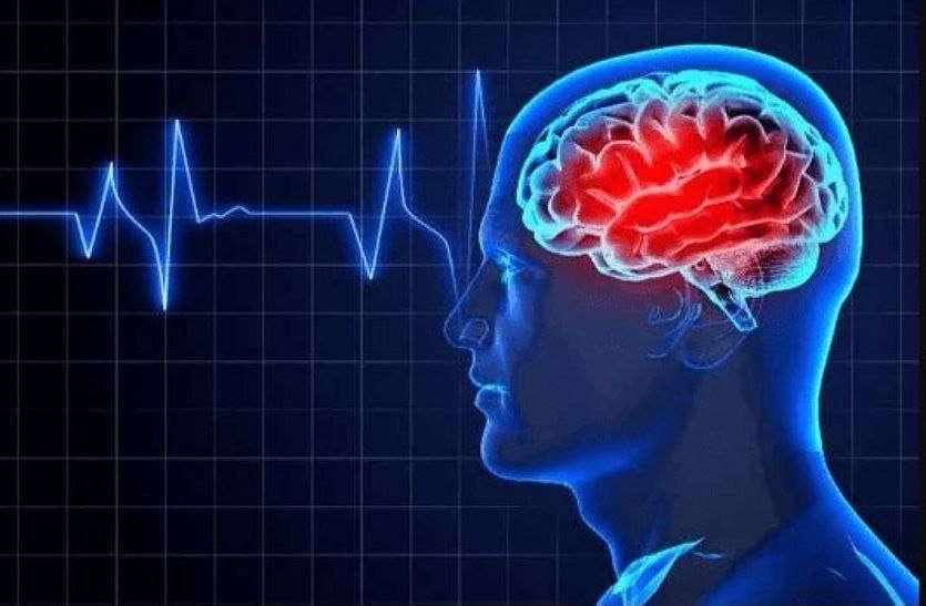 Brainpower foods :- दिमाग को तेज करने के लिए खाएं यह खाद्य प्रदार्थ