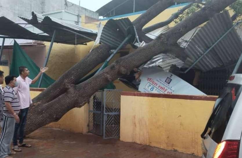 अंधड़ से हुआ नुकसान -पेड़ गिरे, टीन-टप्पर उड़े