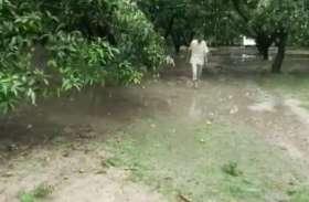 Weather Forecast : बलरामपुर में बीते 48 घंटों से हो रही है झमाझम बारिश, जानें- मौसम विभाग का पूर्वानुमान