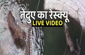 LIVE रेस्क्यू ऑपरेशन: कुएं में गिरे तेंदुए को खाट पर बैठाकर बचाया, देखें वीडियो