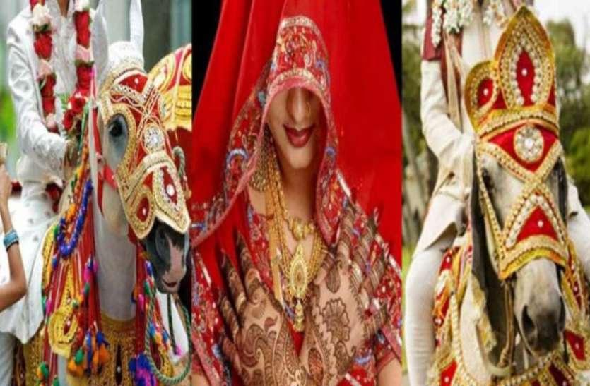 अजब-गजब : एक दुल्हन से शादी करने बारात लेकर पहुंचे दो दूल्हे, एक के साथ हुई वरमाला तो दूसरे संग हुई विदाई