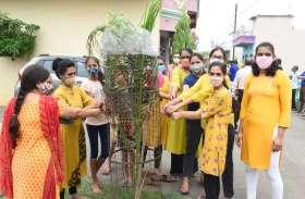 नवाचार: उत्साह से मना पौधों का बर्थडे, खूब बांटे लड्डू