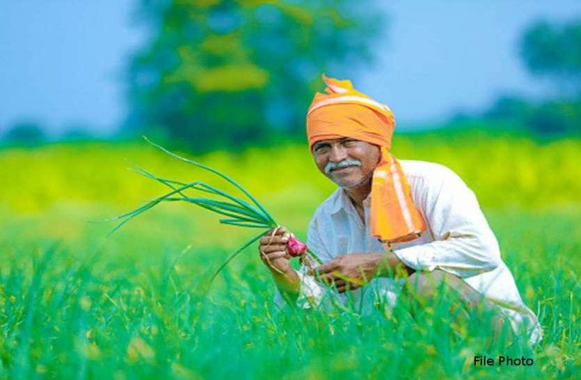किसानों का नवाचार : कृषि विज्ञान केंद्र से जुड़कर 300 से अधिक किसान ऑनलाइन बेच रहे 23 उत्पाद