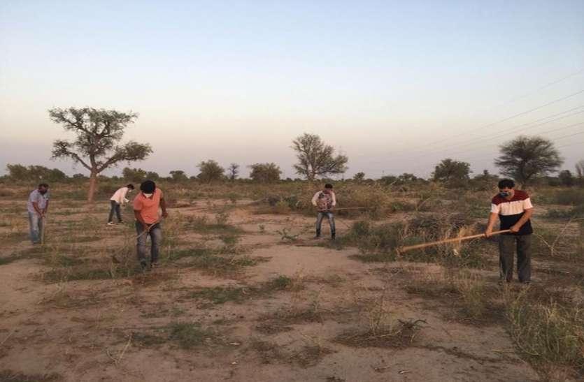 काले हरिणों की शरण स्थली में जुलीफ्लोरा हटाने की मुहिम