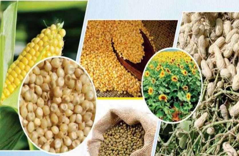 किसानों को मोदी सरकार का तोहफा, खरीफ फसलों की MSP 62 फीसदी तक बढ़ाई