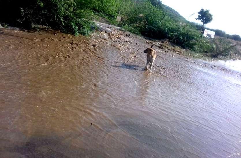प्यास बुझाने की बजाय नाले में बह गया हजारों गैलन पानी