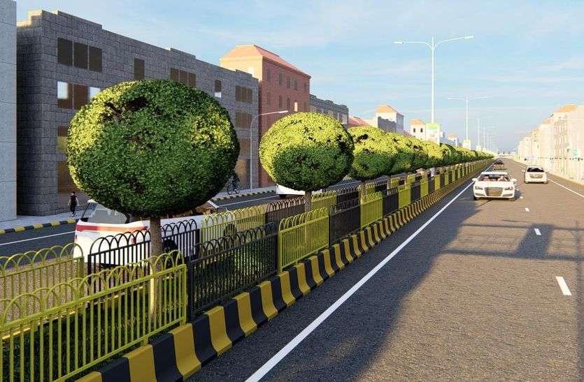 कोनोकार्पस के पौधों से झलकेगी शहर की सुंदरता