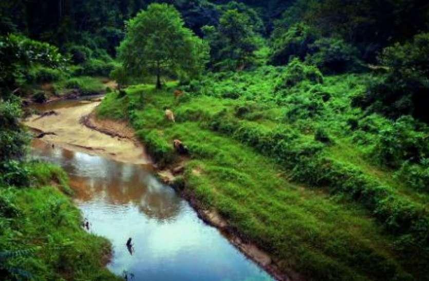 Assam का सातवां नेशनल पार्क बना देहिंग-पटकाई, एक हफ्ते में दो राष्ट्रीय उद्यानों की घोषणा