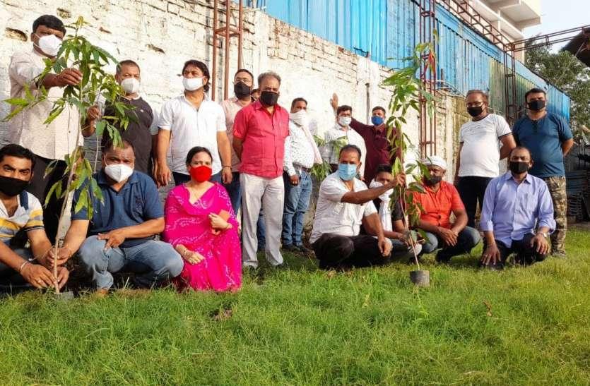 पत्रिका पौधरोपण अभियान व्यवसायियों ने लगाए पौधे संरक्षण का किया वादा