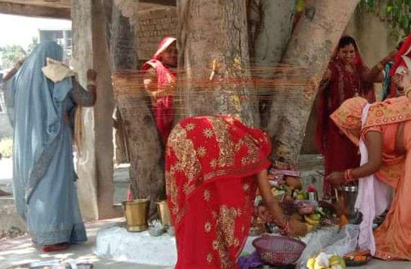 वट सावित्री अमावस्या आज: बड़ की पूजा कर उपवास कर रही महिलाएं, खास है आज का दिन