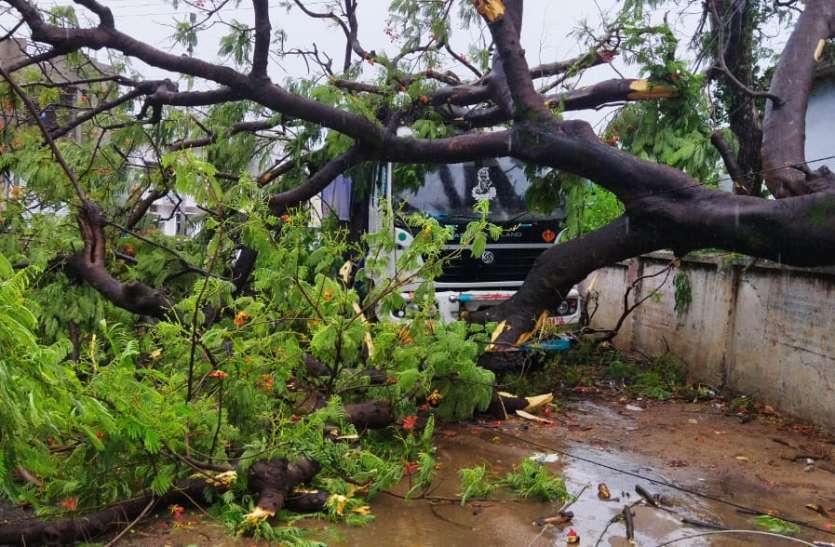 मूसलाधार बारिश में पेड़ उखड़े, बिजली के तार गिरे, व्यवस्था बेपटरी