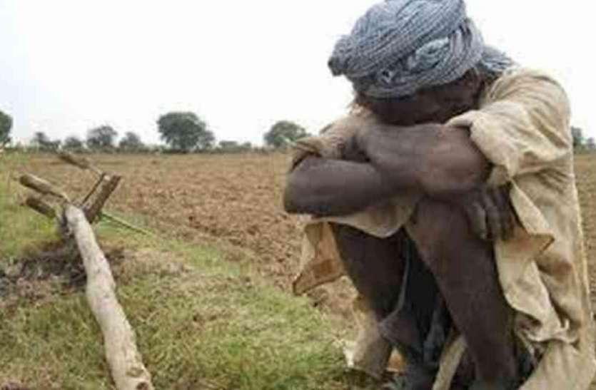 शासन के कोरे आश्वासनों से मायूस किसानों ने MP के इस जिले में छोड़ दी खेती