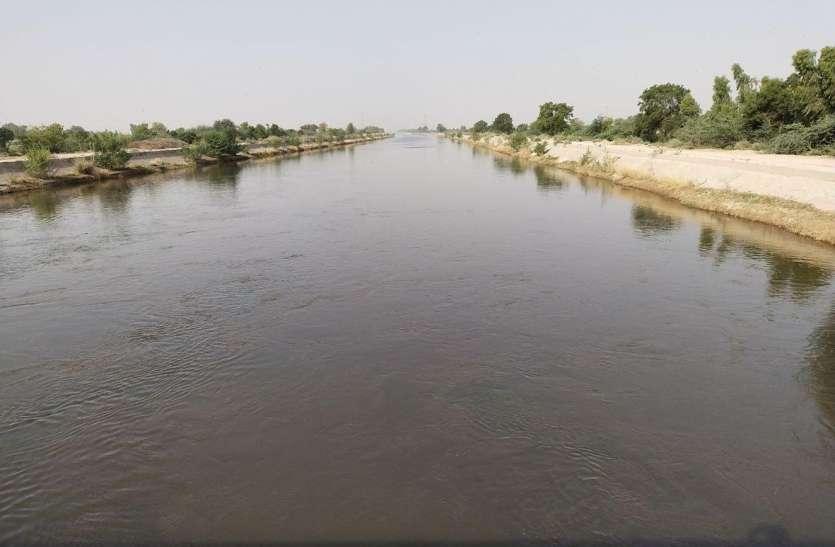 इंदिरागांधी नहर में प्रवाहित पानी कितना प्रदूषित, जयपुर लैब में चलेगा पता